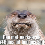 buma-been